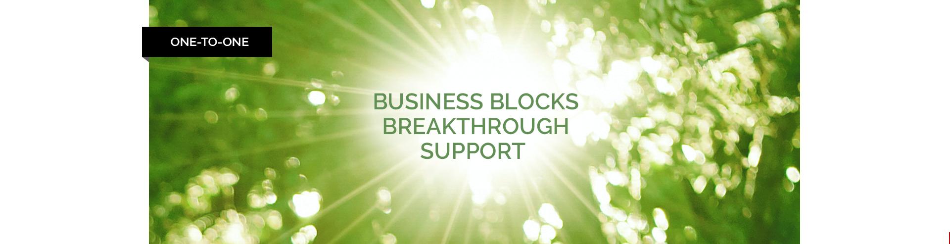 Business Blocks Breakthrough Package